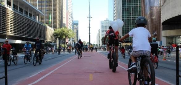 Ciclovia da Avenida Paulista em um domingo, quando a via é fechada para carros Foto: André Tambucci/ Fotos Públicas