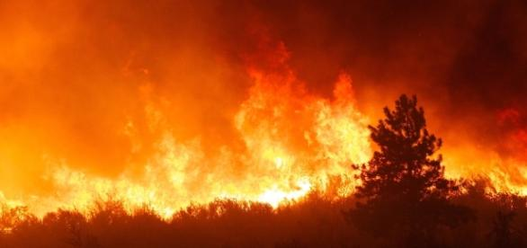 Fire rages in Tennessee as Dollywood evacuated as it's in the path of the fire. Photo: Blasting News Library - visitmysmokies.com