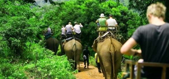 Viaja a Tailandia - Tailandia y Mujeres Jirafa - travelda.es