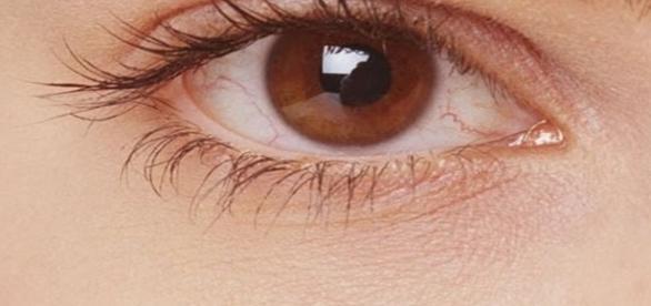 Se você tem os olhos castanhos, saiba que você carrega algo muito especial em sua personalidade.