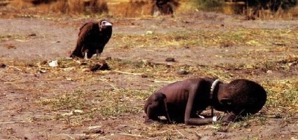 'O abutre e a garotinha', foto verídica de Kevin Carter