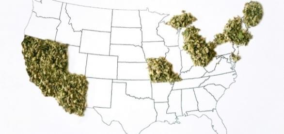 Ecco la cartina degli Stati Usa che potrebbero legalizzare la cannabis l'8 novembre