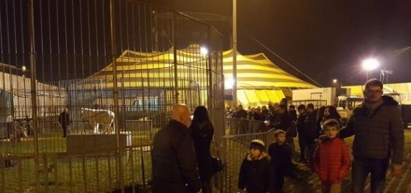 Italian fans flock to Circo Moira Orfei to see the tigers on Thomas Chipperfield's first night