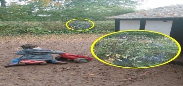 Pesquisadores investigam se as silhuetas azuis são de soldados da guerra civil inglesa (Mercury)