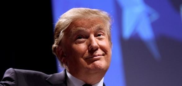Un ritratto di Donald Trump, il presidente USA più improbabile della storia.
