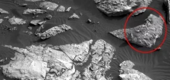 Cadáver é visto em Marte e cientistas chocam-se