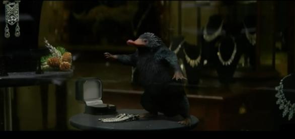 """Capture d'écran de la bande-annonce du film """"Les Animaux Fantastiques"""""""