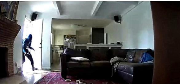 Câmeras flagraram homem arrombando a porta