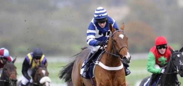 Horse Racing Tips | Tips and Free Bets - tipsandfreebets.co.uk