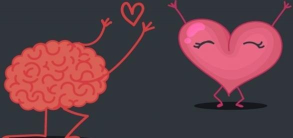 As reações do nosso cérebro diante de uma paixão que se transforma em amor.