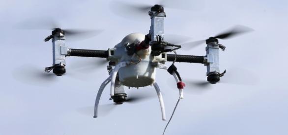 France: l'armée dresse des aigles pour intercepter des drones ... - lacote.ch