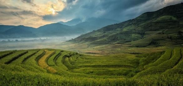 Farming in China / Photo no attrition CCO Public Domain Pixabay