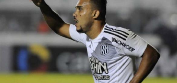 Artilheiro do Brasileirão, Pottker desperta interesse de vários clubes