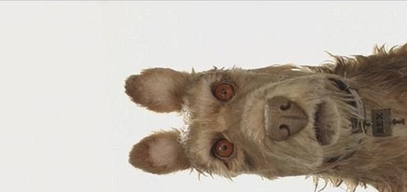 Rex, uno de los personajes de Isle Of Dogs, interpretado por Edward Norton.