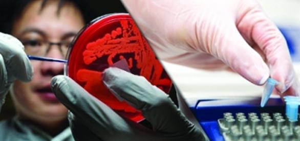 Curso de Microbiologia - Biomedicina