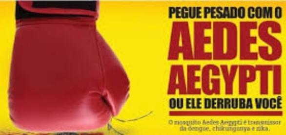 Combate ao Aedes(Foto:Reprodução)