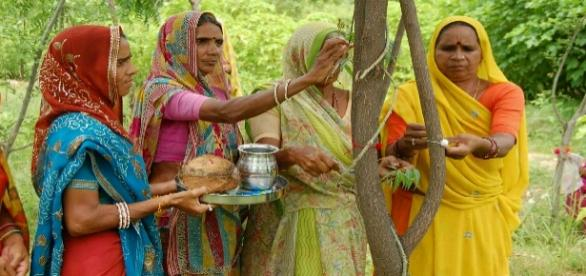 Foto ceremonia enlace con árbol