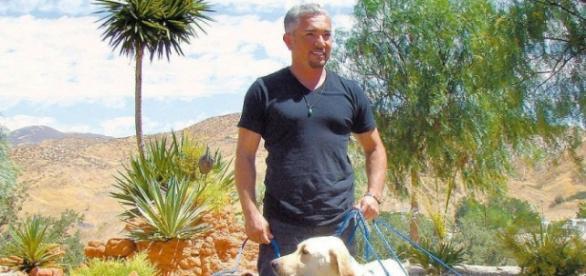 O encantador em passeio com seus cães