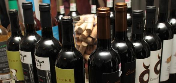 Vinitia favorecerá amistad entre amantes del vino