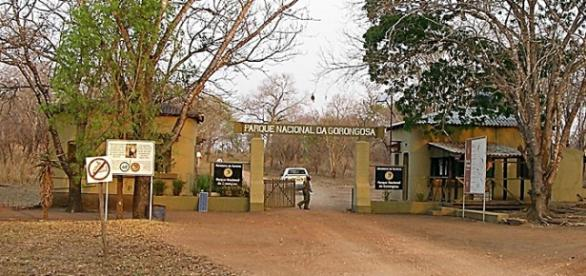Gorongosa. Image by Brian Dell. Wikimedia