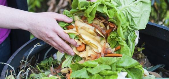 Ley contra el desperdicio alimentario, Francia