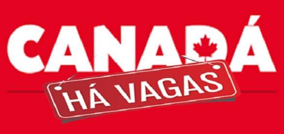 Vagas de emprego no Canadá - Confira