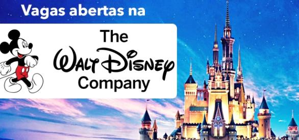 Vagas na Disney - Foto: Reprodução Funchap