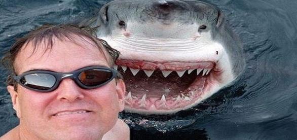 Selfie de Riesgo con tiburon que no deberias hacer