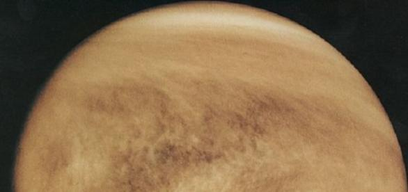 The planet Venus (Credit: NASA)