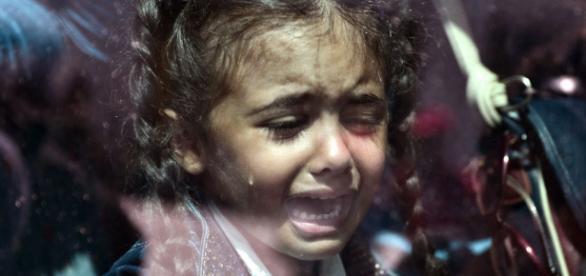 Crianças são as principais vitimas na migração