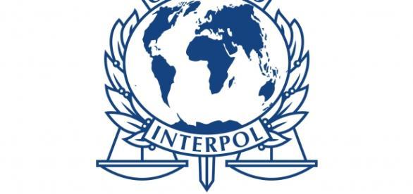 Colaborare bună cu Interpol în 2015
