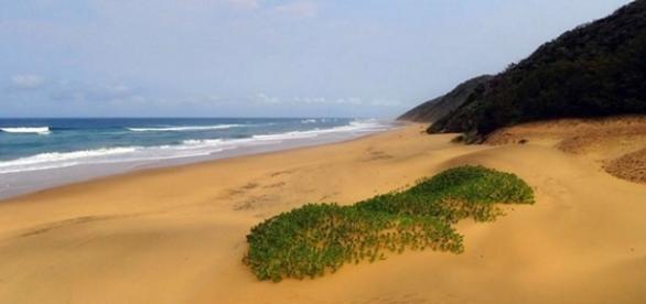 Cape Vidal, iSimangaliso heritage Site.(Wikimedia)