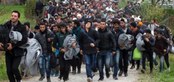 Gdzie zniknęło 140 tys. imigrantów?