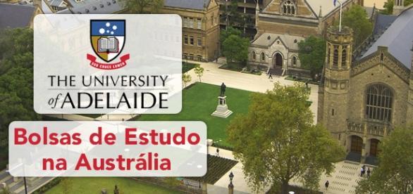 Universidade de Adelaide tem bolsas de estudo - Foto: Reprodução Tcl