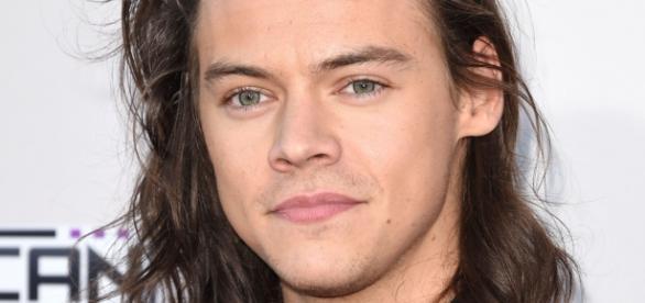 Harry Styles quer ser um sucesso