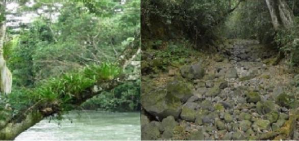 Río Atoyac antes y después del suceso