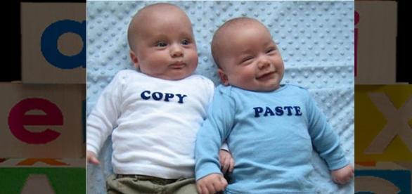 IMG ilustrativa - Gêmeos com Pais diferentes