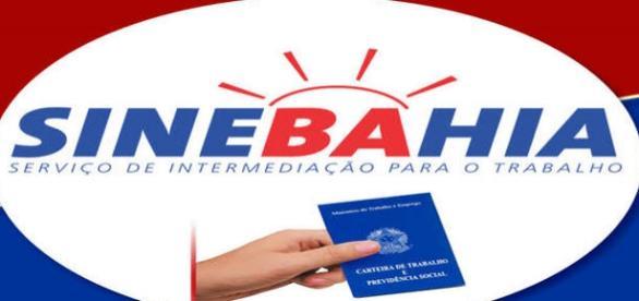 Vagas de emprego para a cidade de Jequié Bahia
