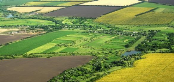 Străinii au cumpărat de 7 ori mai mult pământ