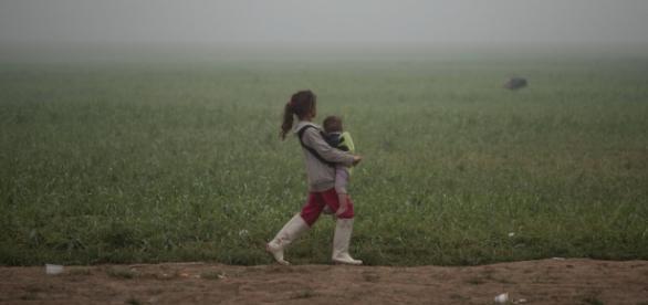 Miles de refugiados buscan asilo en Europa