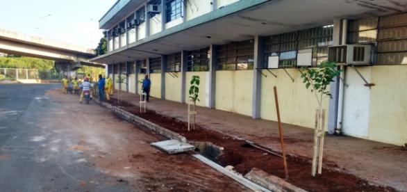 Funcionários se organizam para construir calçada ecológica