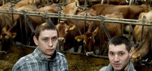 Românii din Danemarca înșelați de patroni