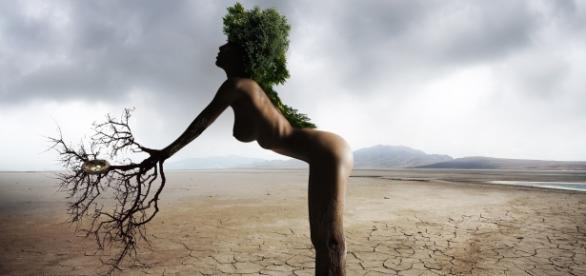Dia Mundial de la Madre Tierra (FOTO Pixabay)