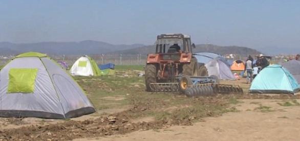 Grecki rolnik zaorał imigrantów