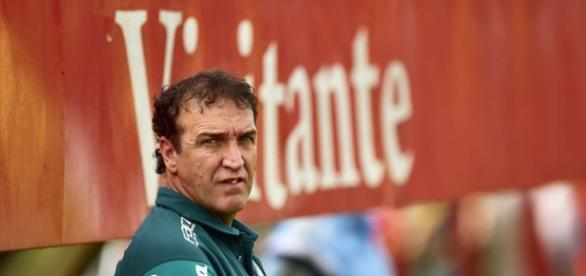 Cuca, técnico do Palmeiras, acompanha jogo pelo Paulistão.