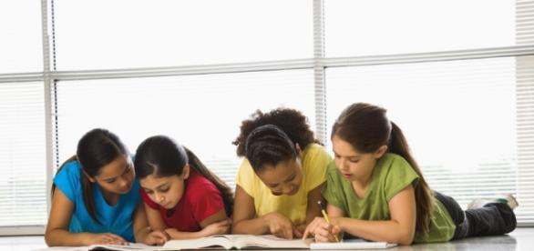Educação Fundamental II e Ensino Médio contarão com novos professores em 2017
