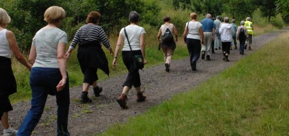 A group of people walking together (Pexels)