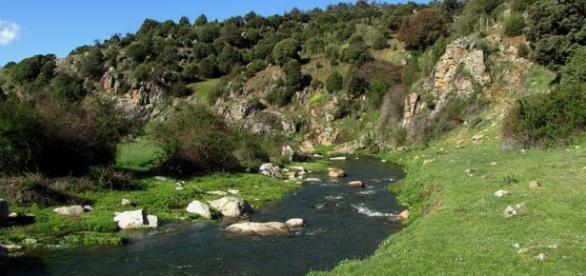 Río Gaznata hacia el embalse del Burguillo