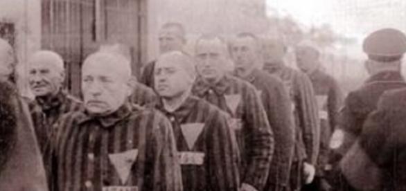 Homosexuales condenados en la Alemania nazi, con el triángulo rosa.