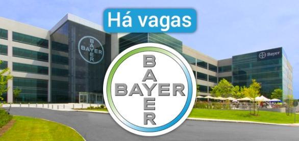 Vagas abertas na Bayer. Foto: Reprodução Njccleanenergy.